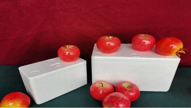 成都泡沫箱冷冻保鲜的特征是真的吗