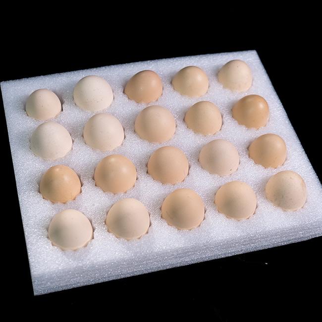 珍珠棉鸡蛋托